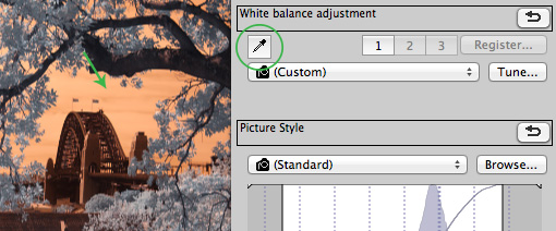 white balance selection